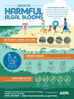 harmful algal blooms awareness