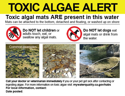 Toxic Algae Alert sign